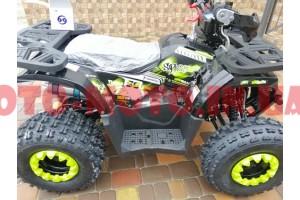 Квадроцикли 125-250 см3